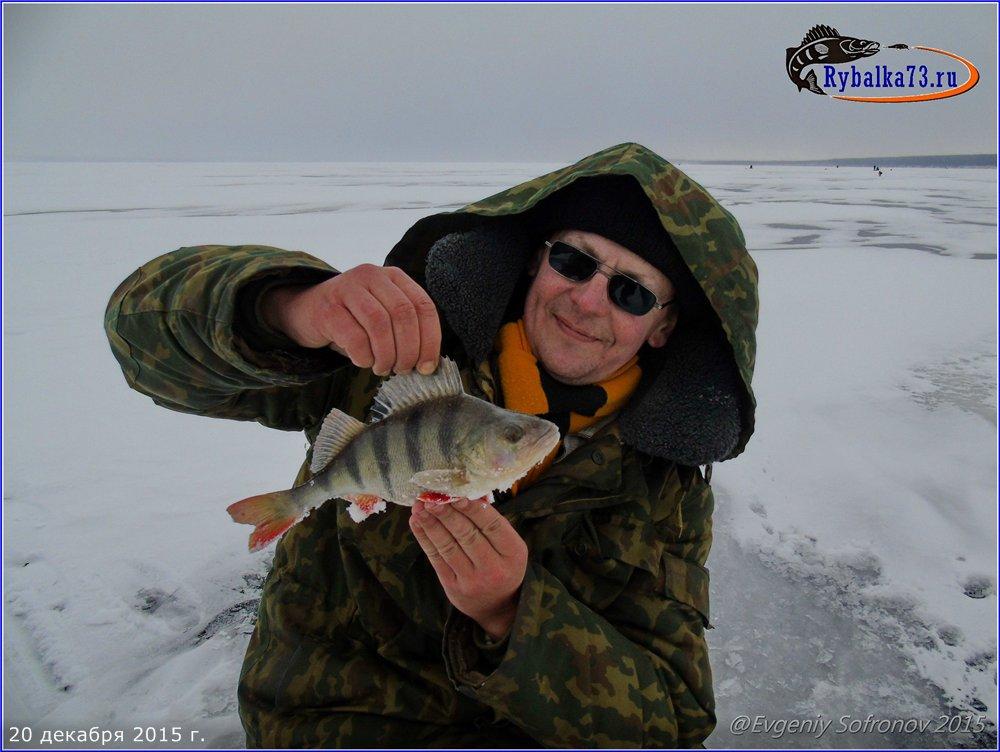 все о рыбалке на волге в ульяновской области