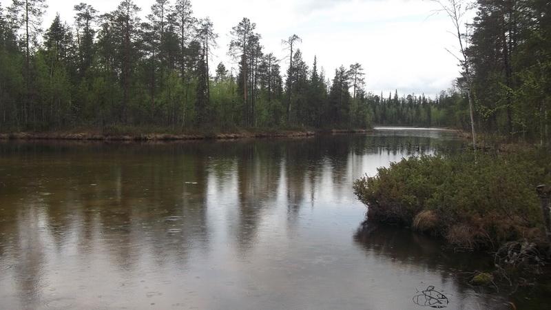 река ежуга рыбалка