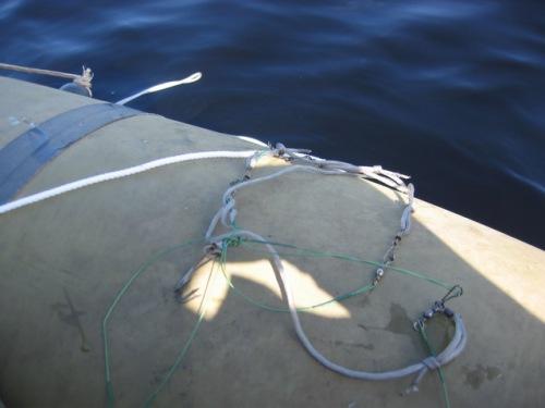 рыболовная снасть ярус