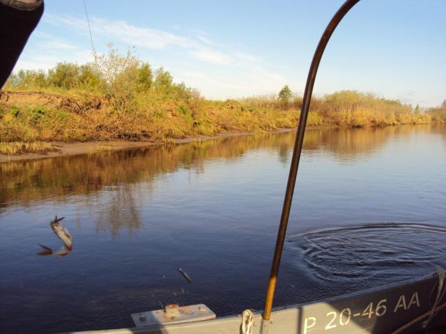 как создать водоем для платной рыбалки