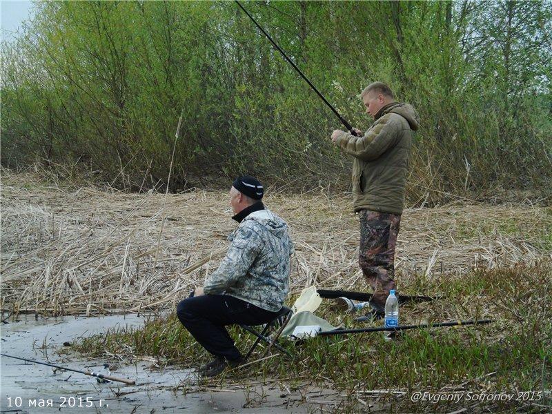 шенкурск как рыбалка