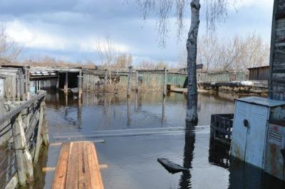 Котлас лодочная станция чайка