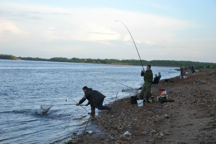 рыбалка котлас прогноз