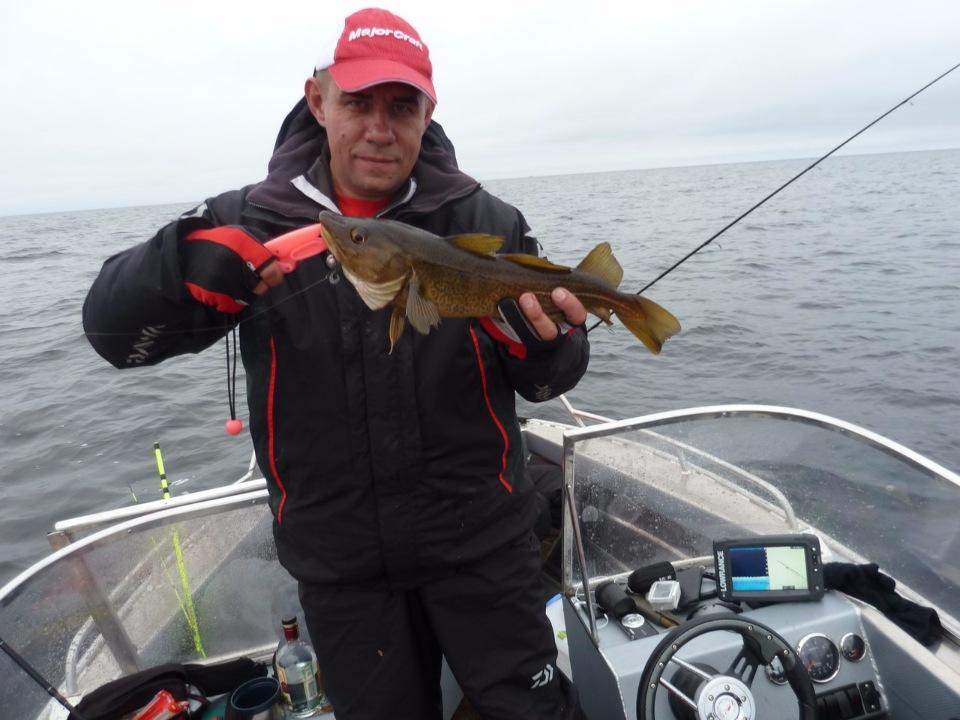 Рыбалка на белом море в мае 2016