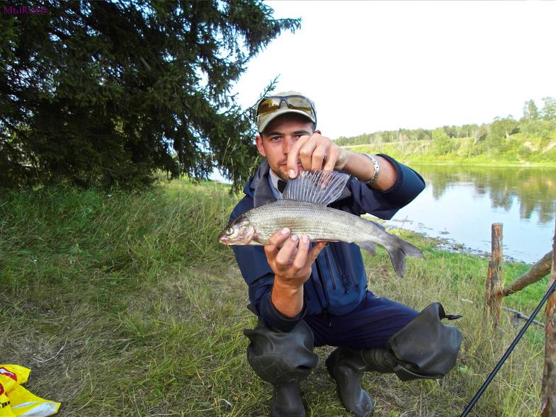 ловить рыбу на реке онега