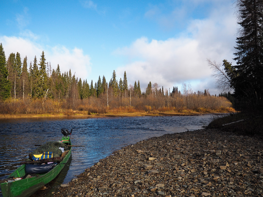 отчеты о рыбалке на реке мезень