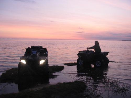 белое море остров мудьюг видео