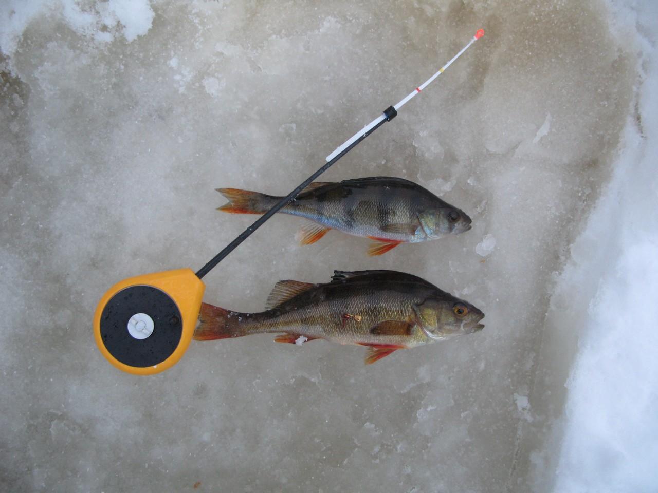 рыбалка для любителя нижегородская область