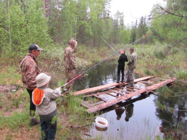 промысловая рыбалка в тайге